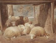 Sale 9047A - Lot 5076 - Thomas Charles Bale (1855 - 1925) - Black Sheep & Resting Flock, 1882 36 x 48 cm (frame: 59 x 69 x 3 cm)