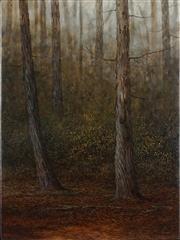 Sale 8901 - Lot 517 - Adam Nudelman (1967 - ) - Cradle Mountain Forest, 2012 54 x 70 cm