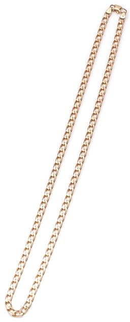 Sale 9149 - Lot 380 - A 9CT GOLD NECK CHAIN; 4.6mm wide filed curb link to parrot clasp, length 54cm, wt. 20.42g.