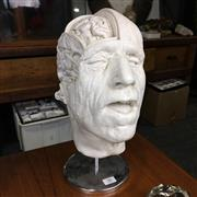 Sale 8758 - Lot 50 - Plaster Anatomical Head on Stand
