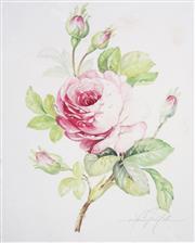 Sale 8901A - Lot 5053 - Vittorio Guidotti (3 works) - Lillies & Camellia (c.1930) each 35.5 x 25.5 cm