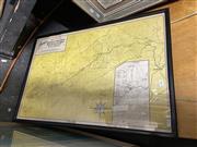 Sale 8878 - Lot 2093 - Gregorys Map of Kosciusko District, 53 x 78cm (frame)