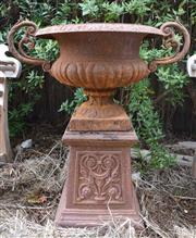 Sale 8950G - Lot 95 - Pair of rust patina cast iron urns on plinths 85cm Height 70 cm wide
