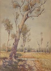 Sale 8892 - Lot 557 - William Lister Lister (1859 - 1943) - The Leaning Gum 61.5 x 44 cm
