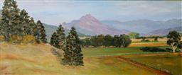 Sale 9143A - Lot 5047 - JOHN KONSTANT (1947 - ) - Australian Landscape, NSW 30 x 72 cm (frame: 62 x 102 x 5 cm)