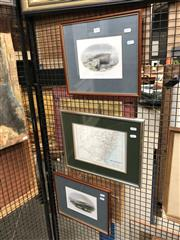 Sale 8784 - Lot 2053 - Colonial School Hand-Coloured Lithographs and Map of NSW (3)