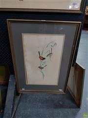 Sale 8613 - Lot 2066 - John Gould MALURUS MELANOCEPHALUS hand-coloured lithograph, 70 x 50.5cm (frame size) printed by C. Hullmandel -