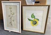Sale 9011 - Lot 2086 - Robyn Horsburgh & Artist Unknown (2 Works) Sunflower, 1996 & Carlisle Thistle, 1980, watercolour, frame: 54 x 44 cm and 61 x 39 cm...