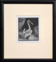 Sale 8309A - Lot 102 - Lionel Lindsay (1874 - 1961) - Pelican, c1923 12 x 10.5cm