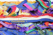Sale 8644 - Lot 62 - Bag of Dog Show Ribbons