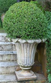 Sale 8568A - Lot 27 - A pair of petal form jardinières planted with buxus, total H approx. 130cm