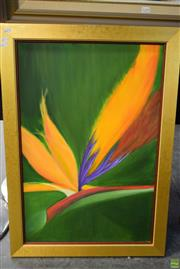 Sale 8592 - Lot 2057 - Artist Unknown, Bird of Paradise, Oil on Canvas (87 x 62cm)