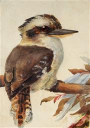 Sale 9001 - Lot 574 - Artist Unknown - Kookaburra 29 x 21.5 cm (50 x 42 x 4 cm)