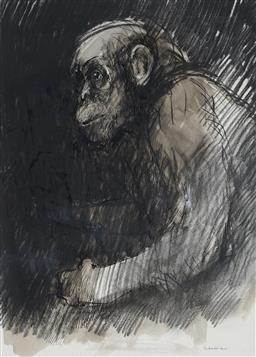 Sale 9063A - Lot 5003 - Margaret Woodward (1938 - ) - The Young Ape 53 x 38 cm (frame: 81 x 65 x 4 cm)