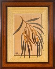 Sale 8992 - Lot 570 - Michael Retter ( 2 works) - Banksia Serrata, 1991 & Acacia Pendula, 1999 39 x 31 cm; 34 x 27 cm