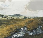 Sale 8693A - Lot 5079 - Phil Greenwood - Cregannan, 1979 36 x 41cm