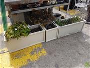 Sale 8601 - Lot 1265 - Set Of Three Trough Planters