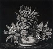 Sale 8896A - Lot 5024 - Lionel Lindsay (1874 - 1961) - Red Cactus 1939 14 x 15 cm