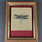 Sale 8638 - Lot 642 - Replica Dragonfly Fossil, framed