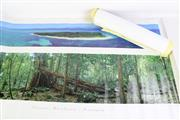Sale 8913C - Lot 89 - Group Phil Gray photographs in sleeve together with a Mont St. Michel Print