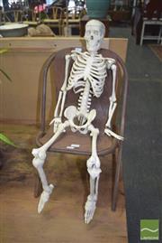 Sale 8390 - Lot 1228 - Skeleton on Chair