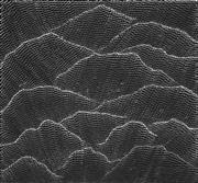 Sale 8895A - Lot 5003 - Lily Kelly Napangardi (1948 - ) - Sand hills 88 x 95 cm