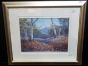Sale 9061 - Lot 2020 - Linda Currie Wallabadah Hills, pastel frame: 48 x 59 cm, signed lower right