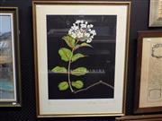 Sale 8417T - Lot 2038 - Randell Del Nin - Still Life, screenprint, ed. 8/10, 61 x 48cm, signed lower right