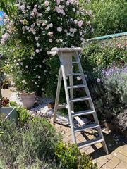 Sale 9087H - Lot 12 - A19th Century Antique French,  hand painted folding ladder. From a Bibliotheque in Paris. 1.7m height