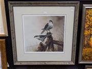 Sale 8417T - Lot 2015 - Paul Margocsy - Birds of Prey 40 x 43cm