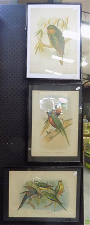 Sale 8561 - Lot 2025 - Group of 3 Chromolithographs by Gracius Broinowski, all Volume III: Kakapo, Blue-Bellied Lorikeet & Four Parakeets