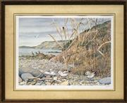 Sale 8699 - Lot 2043 - Peter Barrett - Native Birds on Shore, 1984 28 x 38.5cm