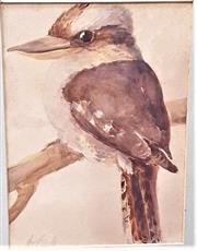 Sale 9058 - Lot 2009 - Artist Unknown - Kookaburra frame: 42 x 37 cm
