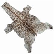 Sale 8758 - Lot 39A - Giraffe Skin, length: 3.6m