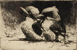 Sale 9125 - Lot 566 - Sydney Long (1871 - 1955) Young Kookaburras drypoint etching, ed. 1st state 13.5 x 21 cm (frame: 35 x 40 x 2 cm) signed lower right....