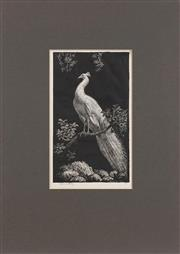 Sale 8443A - Lot 5058 - Lionel Lindsay (1874 - 1961) - The white peacock 20 x 11.5cm