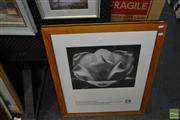Sale 8464 - Lot 2039 - 2 x Max Dupain Prints