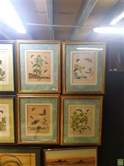 Sale 8627 - Lot 2032 - Moses Harris (1731 - c1785) - 4 Plates from The Aurelian, handcoloured copper engravings, 56.5 x 46.5cm (frame sizes)