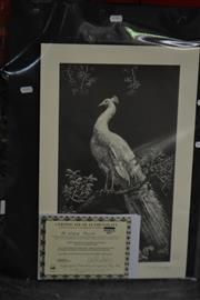 Sale 8497 - Lot 2068 - Lionel Lindsay, Quantity of (9) facsimile etchings, The White Peacock (each with copy of certificate)
