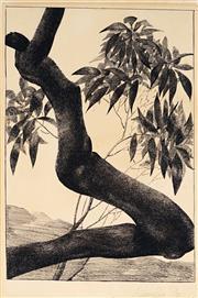 Sale 9028 - Lot 2013 - Artist Unknown - Nude and Foliage, 1932 24.5 x 17cm (mount: 36 x 22 cm)