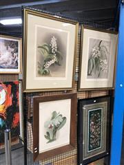 Sale 8779 - Lot 2059 - 3 botanical chromolithographs, after HG Moon