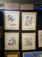 Sale 8627 - Lot 2038 - Moses Harris (1731 - c1785) - 4 Plates from The Aurelian, handcoloured copper engravings, 56 x 47cm (frame sizes)