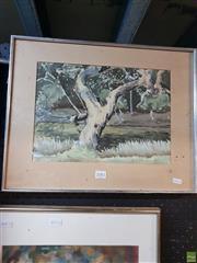 Sale 8645 - Lot 2081 - A. G. Norman - River Gum, Water Colour, SLL