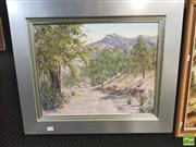 Sale 8413T - Lot 2049 - Edna Hely (XX) - In Brachina Gorge, Flinders 39.5 x 49.5cm