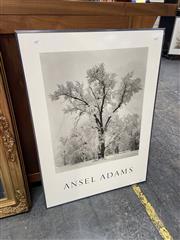 Sale 9072 - Lot 2063 - Ansel Adams Poster, 91 x 66cm -