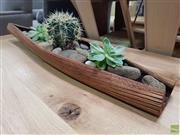 Sale 8637 - Lot 1017 - Organic Leaf Form Tray of Succulents