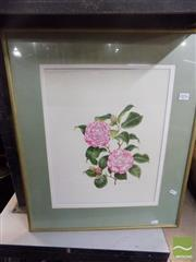 Sale 8513 - Lot 2076 - Peter Longhurst Camellias Print