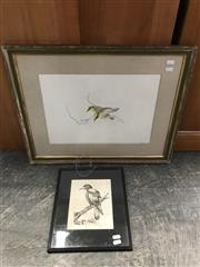 Sale 9024 - Lot 2077 - Artist Unknown, Magpie, original ink on paper (AF), 32 x 27cm (frame) together with a study of yellow finches