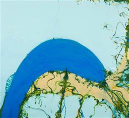 Sale 9221JM - Lot 5067 - JOHN OLSEN (1928 - ) Sydney Harbour archival pigment print, ed. A/P 2 72.5 x 80 cm (frame: 92 x 98 x 3 cm) signed lower right