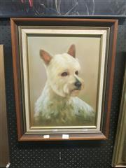 Sale 8650 - Lot 2087 - Artist Unknown - Dog Study, Oil, SLR, 39x29cm